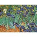 Van Gogh - Lirios