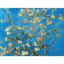 Van Gogh - Rama del almendro en flor