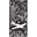 Nueva York - Aeroplano Hawks sobre Nueva York