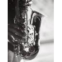 Nueva York - Manos de saxofonista tocando