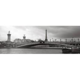 París - Puente Alejandro III y Torre Eiffel