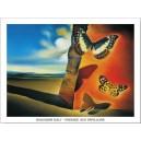 Dalí - Paisaje con mariposas